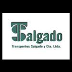 LOGO TRANSPORTES SALGADO